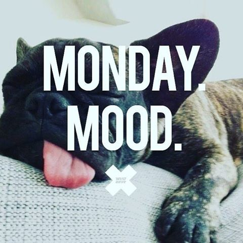 Have a nice week #mondaymood #mondays #mondaymotivation